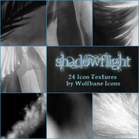 Shadowflight Icon Textures by jordannamorgan