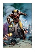 Wolverine KS commission by aethibert