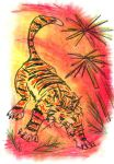 Oil Pastels: Tiger by kxeron