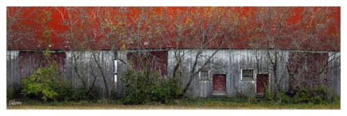 Red Roof Barn by ejohanne