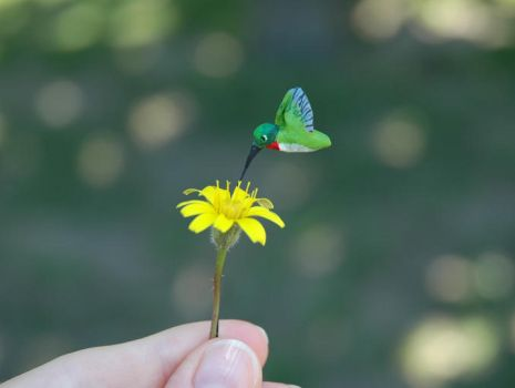 The tiniest Humming Bird by amber-rose-creations