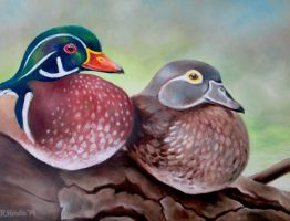 Wood Ducks by TernFeather