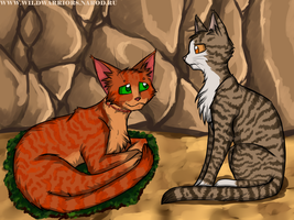 Warriors: Leafpool's Wish. Chapter 2 by Do-omed-Moon