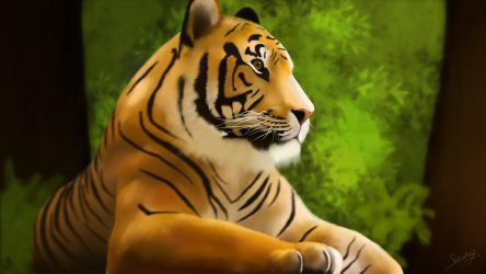 Tiger - Courage behind the silence by design2din
