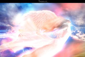 Angel Fly by acracium