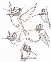 Flit - Sketches by RavenEvert