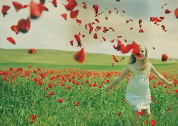 Petals on the wind by LILY-m