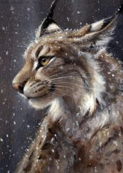 Singular Lynx by kenket