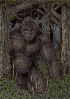 Sasquatch - Sketch Card by tonyperna