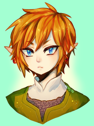 loz -- Linkieeee by onisuu