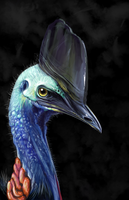 Cassowary by Lahvorre