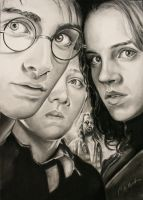 Harry Potter Trio Poster by CAMartin