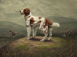 Springer Spaniel by Imaginary-Rat