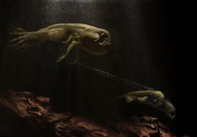 Walking the Dogfish by skulpturro