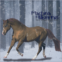 Machina Hibernis by FelixFelicias