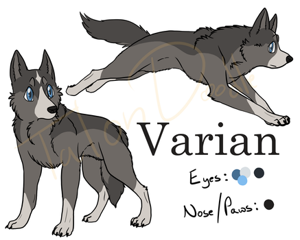 Varian Reference by TalonDoodle