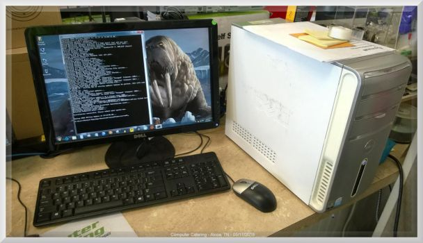 Nanook Gets His WSUS On by slowdog294