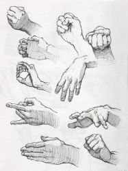 Hand Studies in Ink 2 by lovablemikey