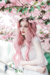 Pink spring by thefirebomb