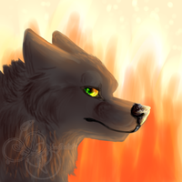 .:The Fire Wolf:. by DarkWolfArtist