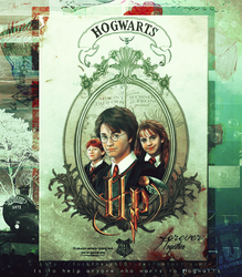 Harry Potter ID by Fuckthesch00l
