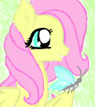 Fluttershy Profile by hippiekitty123