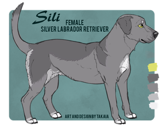 Sili Reference by Takkaia