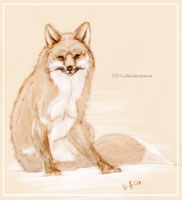 Rubin the Fox by Jullelin