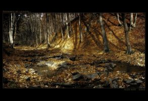 Covered by Leaves by Westik