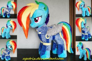 Rainbow Dash (battle outfit) plush by agatrix