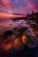 Eventide by Ian-Plant