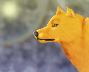 raindrops by MeowingWolf200