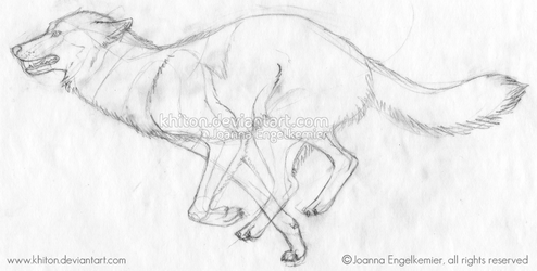 Wolf Running Sketch by khiton