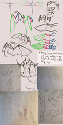 Tutorial: Wings reference and anatomy by Remarin