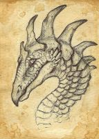 atc dragonhead by Opaca