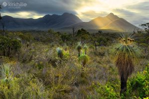 Stirling Ranges Sunset by Furiousxr