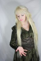mirkwood  costume by Liancary-art