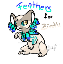 Feathers for Zimtli by JB-Pawstep