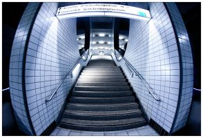 the way up by toko