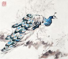 Peacock after Zhidong by toedeledoki