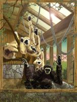 the monkey house by RAY-N-BOW