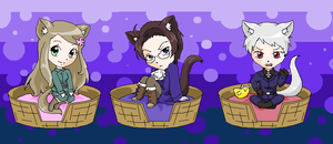 Hetalia Kitties 3 by pinkkittypower