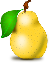 Pear Clip Art by vansc14