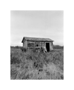 Shed by apinrise