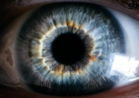 The Portal II - a human eye by borda