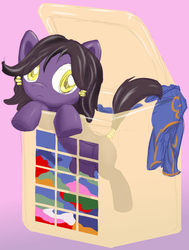 Why Am I In Hamper by Retl