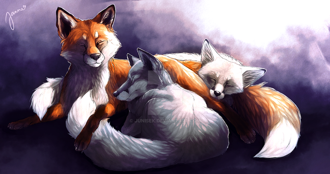 Foxpile by Junisek