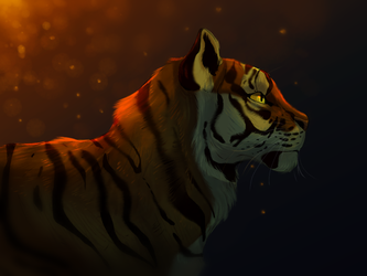 Tiger by Marietsloth