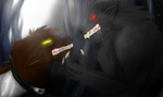 moon and blackfang by petplayer976