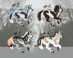Flatsale canine adoptables 0/4 (CLOSED) by Freak-of-adopts
